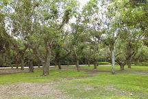 Deering Estate, Miami, United States