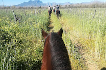 Horse Rides at Pete's, Stellenbosch, South Africa