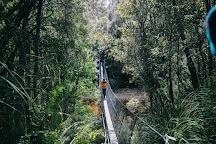 Frenchmans Cap, Derwent Bridge, Australia