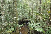 Sandakan Rainforest Park, Sandakan, Malaysia