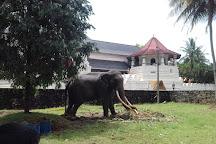 G-Go Tours, Colombo, Sri Lanka