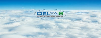 Delta 9 Medical Consulting