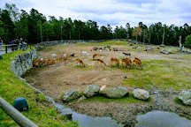 Kolmården Zoo, Kolmarden, Sweden