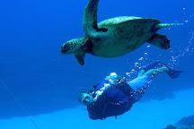 Pacific Divers, Rarotonga, Cook Islands