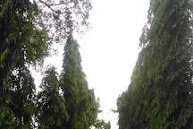 Pokok Getah Pertama, Seremban, Malaysia