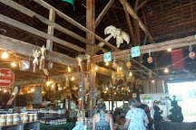 Stover's Farm Market and U-pic, Berrien Springs, United States