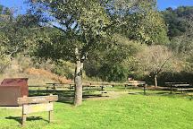 Redwood Regional Park, Oakland, United States