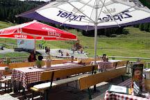 Sommerrodelbahn Pendolino, Gortschach, Austria