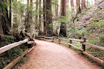 Muir Woods National Monument, Mill Valley, United States
