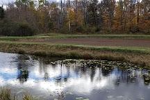 Johnston's Cranberry Marsh & Muskoka Lakes Winery, Bala, Canada