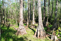 Big Cypress Swamp Welcome Center, Ochopee, United States