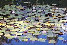 Kasugai Japanese Garden, Kelowna, Canada