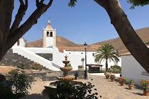 GoGo Tour Canaries, Fuerteventura, Spain