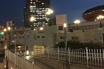 Daikoku Bridge, Chuo, Japan
