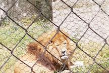 Zoo Fauverie du Faron, Toulon, France