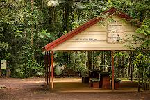 Malanda Falls, Malanda, Australia