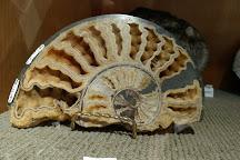 Courtenay & District Museum & Paleontology Centre, Courtenay, Canada