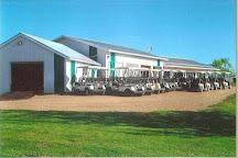 Trochu Golf and Country Club, Trochu, Canada