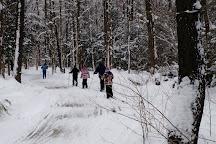 Wilderness Lodge, Wattsburg, United States