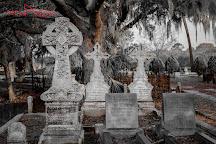 Magnolia Cemetery, Charleston, United States