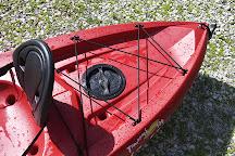 Hunter Springs Kayaks, Crystal River, United States