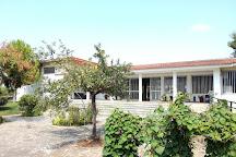 Archaeological Museum of Nemea, Nemea, Greece