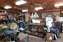 Bay Country Shop, Cambridge, United States
