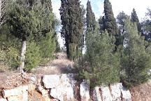 Ljubović Hill, Podgorica, Montenegro