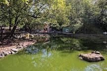 Elmwood Park Zoo, Norristown, United States