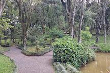 Parque do Imigrante, Treze Tilias, Brazil
