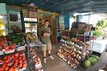 The Tomato Place, Vicksburg, United States