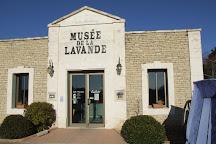 Musee de la Lavande Luberon, Coustellet, France