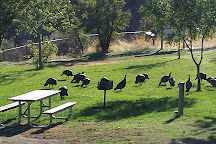 Palouse Falls State Park, Washtucna, United States