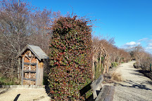Promenade Fleurie, Mimizan, France