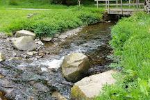 Colby Woodland Garden (National Trust), Amroth, United Kingdom