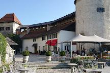 Bled Castle (Blejski Grad), Bled, Slovenia