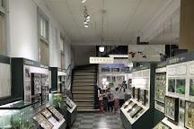 Nawa Insect Museum, Gifu, Japan