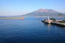 Kagoshima City Aquarium, Kagoshima, Japan