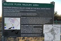 Willcox Playa Wildlife Area, Willcox, United States