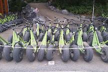 Monsterroller Braunlage, Braunlage, Germany
