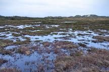 Abelines Gaard, Hvide Sande, Denmark