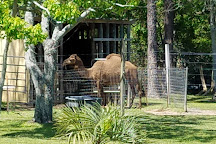 Alabama Gulf Coast Zoo, Gulf Shores, United States
