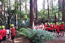 Adventure Forest, Whangarei, New Zealand