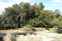 Rosalind Park, Bendigo, Australia