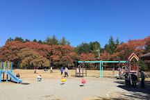 Kasuga Park, Ina, Japan
