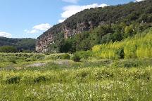 Bambousaie de La Roque-Gageac, La Roque-Gageac, France