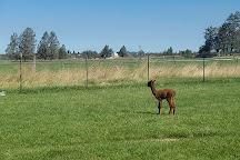 Crescent Moon Ranch, Terrebonne, United States
