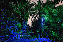 Rainforest Lumina, Singapore, Singapore