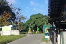 Teritip Crocodile Farm, Balikpapan, Indonesia