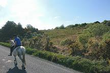 Knockillaree Riding Centre, Oughterard, Ireland